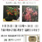秋の山野草と盆栽大即売会が開催されます。