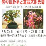 「第2回 秋の山野草と盆栽大即売会」が開催されます!